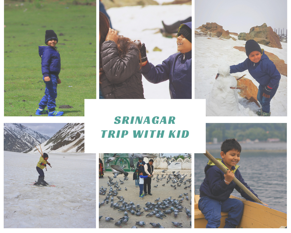 around Srinagar with kids